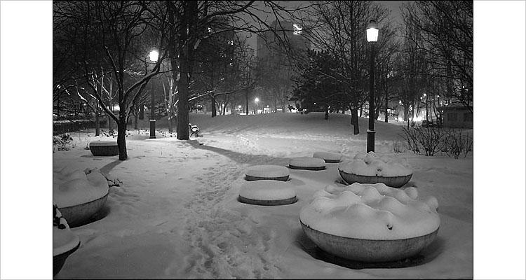 snowy park || Digital Rebel  1/4s | F3.5 | ISO 400