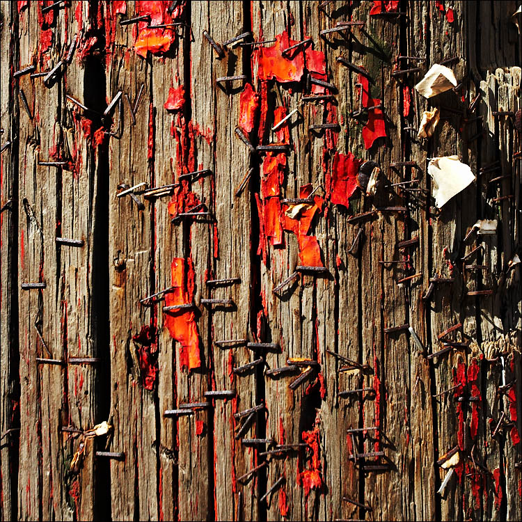 stapled remainings || canon 350d/ef17-40L@40 | 1/160s | f8 | iso100 | handheld