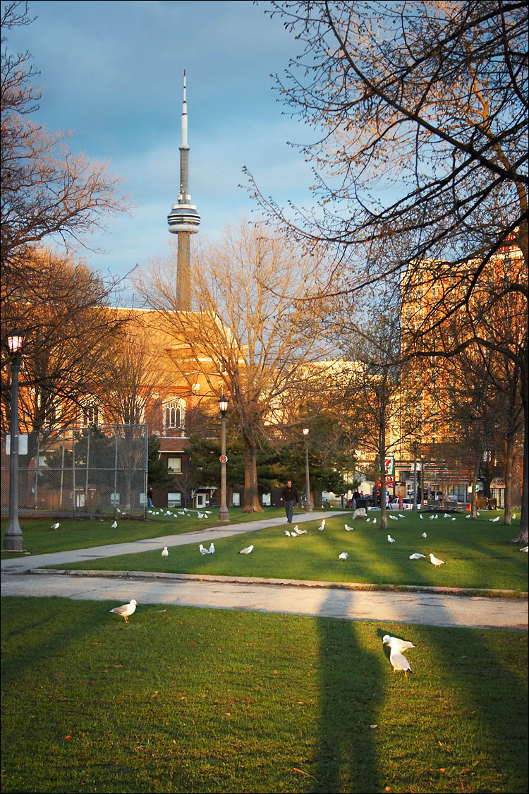 cn tower, seagulls and me || canon 350d/efs18-55@45 | 1/60s | f6.3 | ISO 200 | handheld